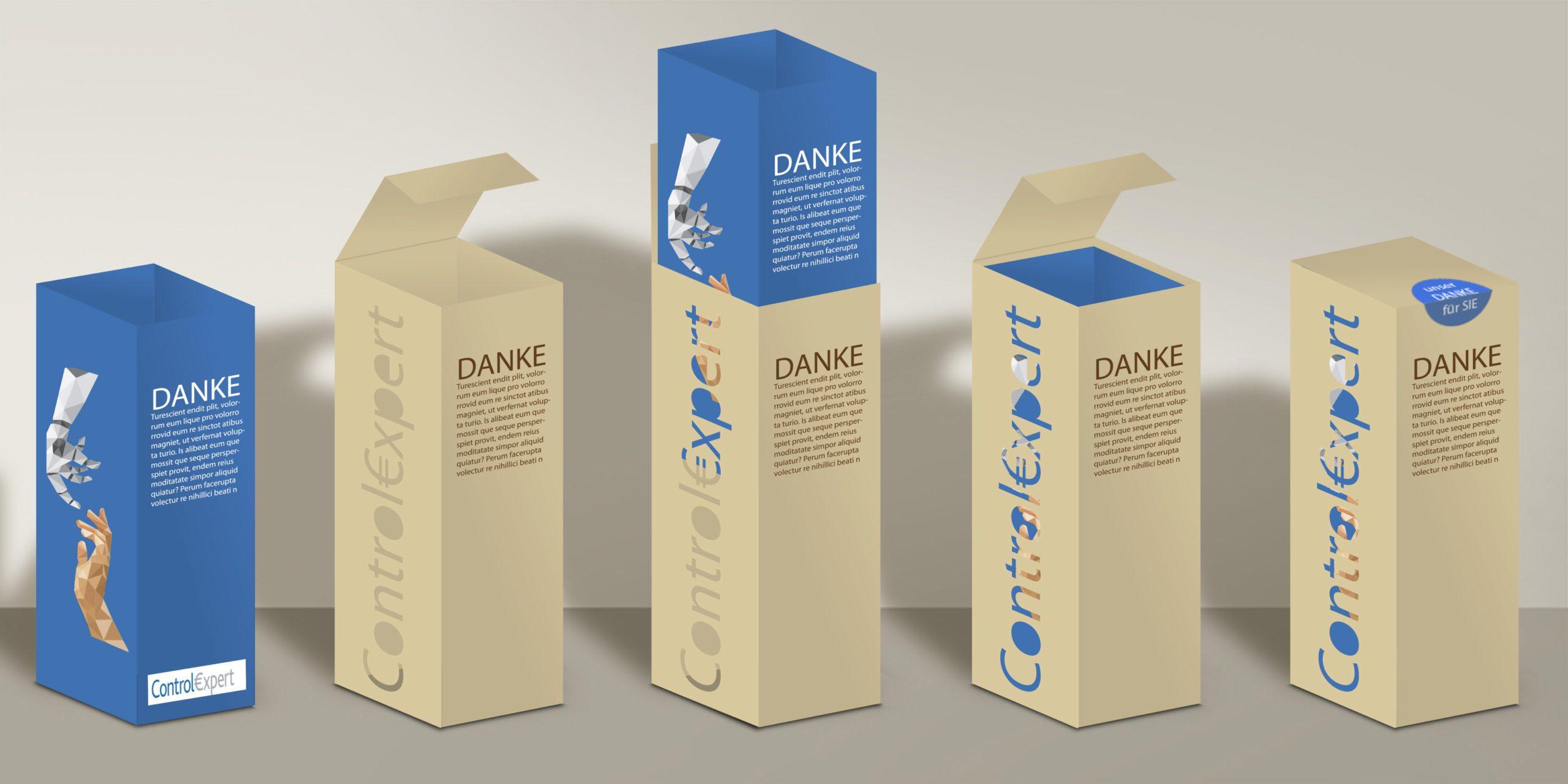 Gestaltung Sonderverpackung Stülpschachtel mit Stanzform